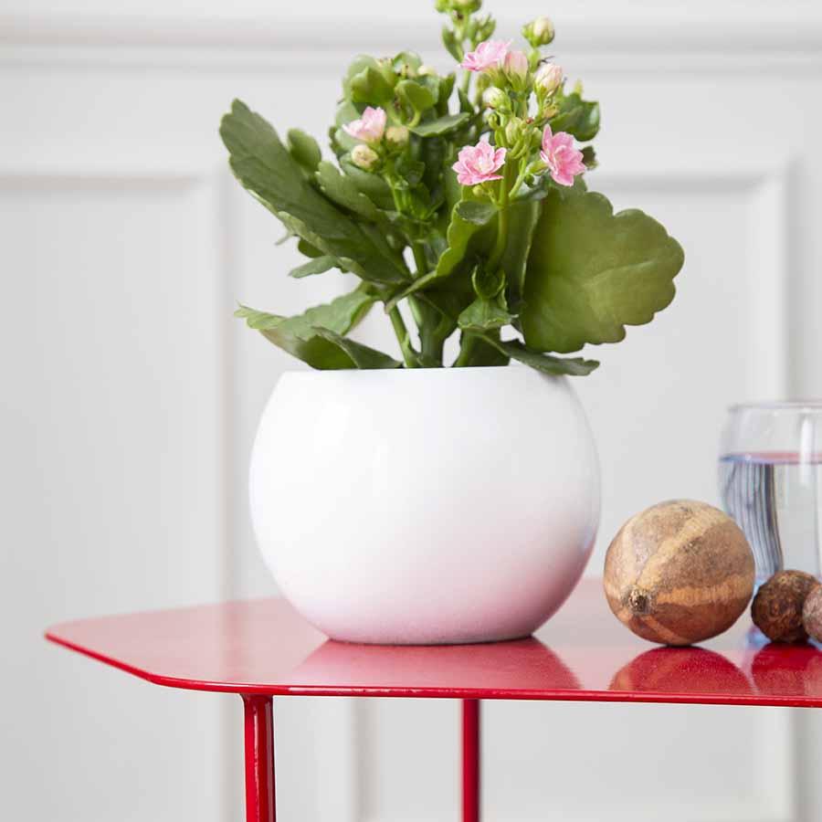 Mặt bàn HEXAGON Red